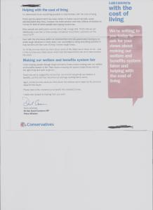 cameron's survey letter to marginal voters
